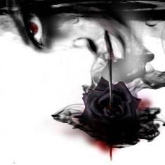 http://vampwolf.ucoz.ru/avatar/69/634052.jpg